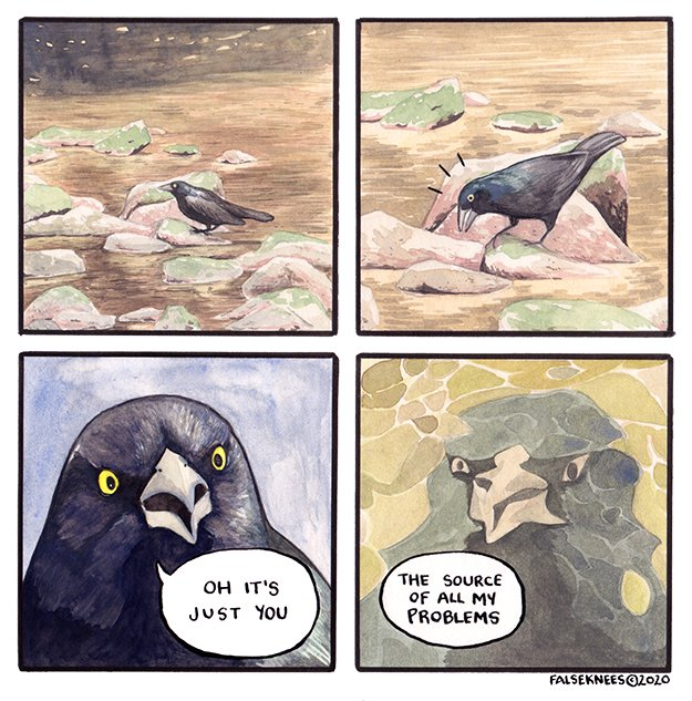 """A four panel comic of a crow by falseknees looking at its own reflection. It says, """"Oh it's just you. The source of all my problems."""""""