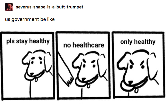 """A three panel comic of a doc that refuses to give up its ball. It says """"pls stay healthy, no healthcare, only healthy."""" It is captioned """"us government be like"""""""